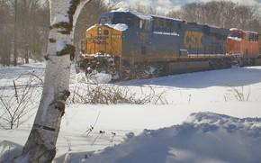 Picture nature, Train, slow