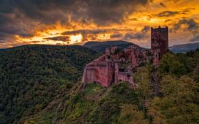 Picture Landscape, France, Forest, Alsace, Saint-Ulrich Castel