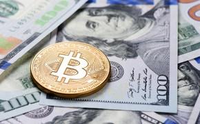 Picture bitcoin, blur, bitcoin, dollars, bills, dollars, Franklin