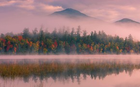 Picture autumn, trees, mountains, fog, USA, the state of new York