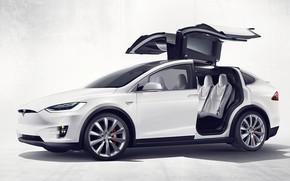 Picture Tesla, Electric Car, Tesla Model X