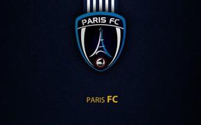 Picture wallpaper, sport, Paris, logo, football, Ligue 1