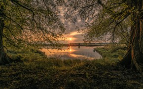 Picture trees, sunset, lake, photo