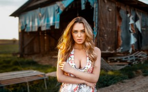 Picture look, sexy, pose, background, model, portrait, makeup, dress, the barn, hairstyle, blonde, bokeh, Sara, Damian …