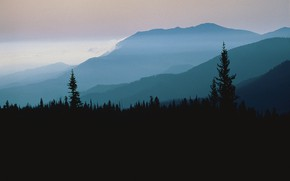 Picture forest, the sky, trees, sunset, mountains, nature, fog, rocks, the evening