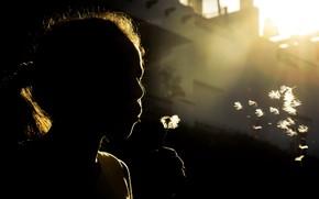 Picture background, dandelion, girl