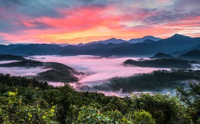Picture mountains, fog, dawn, hills, vegetation, Thailand