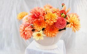 Picture flowers, bright, bouquet, fabric, white, vase, still life, orange, light background, table, different, composition, dahlias, …
