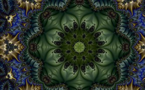 Picture flower, pattern, fractal