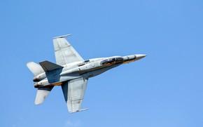 Picture fighter, flight, CF-188 Hornet