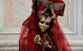 Picture rose, mask, carnival costume