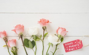 Picture holiday, roses, bouquet, pink, white, Mother's Day