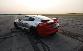 Picture Ford, Mustang GT, Roush, 2019, Old Crow