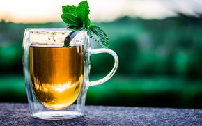 Picture tea, Cup, drink, mint