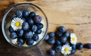 Picture blue, berries, chamomile, blueberries