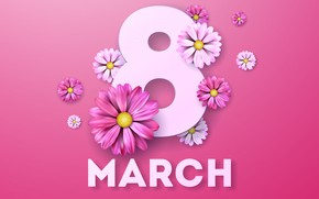 Picture flowers, pink background, March 8, pink, flowers, women's day, 8 march, women's day