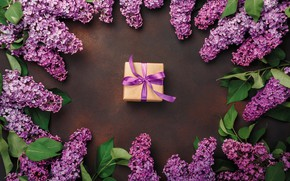 Picture flowers, background, gift, lilac