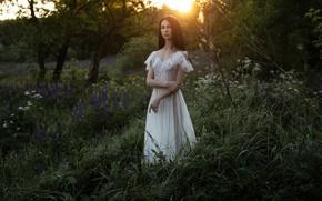 Picture summer, look, girl, the sun, nature, pose, garden, dress, brunette, Frolov Andrey