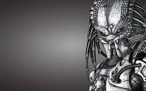 Picture background, Predator, comics