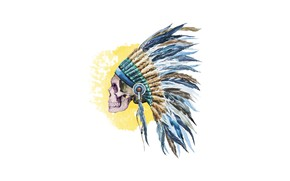 Picture skull, vector, feathers, Indian