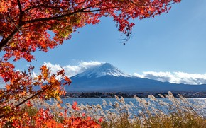 Picture autumn, the sky, leaves, colorful, Japan, Japan, red, maple, mount Fuji, landscape, autumn, leaves, autumn, …