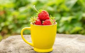 Picture summer, berries, strawberry, mug, ripe