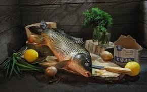 Picture glass, Board, fish, bow, dill, knife, lemons, salt, salting, Sergey Pounder