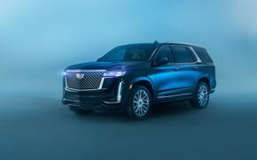 Picture Cadillac, Escalade, Luxury, 2021, Cadillac Escalade Luxury, Cadillac escalade, Escalade Luxury