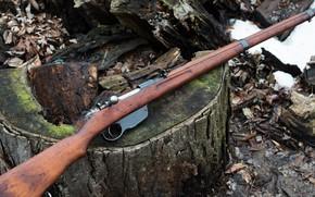 Picture weapons, rifle, weapon, rifle, Steyr Mannlicher, M95, M1895