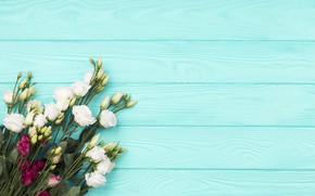 Picture flowers, background, blue, bouquet, white, eustoma, Burgundy