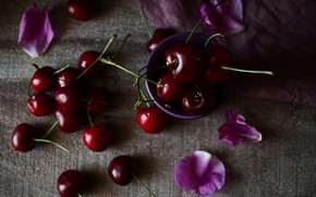 Picture cherry, berries, the dark background, table, petals, fabric, pink, bowl, placer, cherry, bokeh, composition, juicy, …