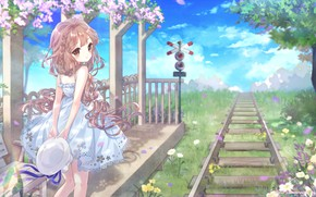 Picture Flowers, Summer, Girl, Railroad, Rails