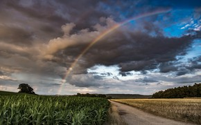 Picture road, field, rainbow