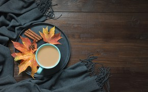 Picture autumn, coffee, Cup