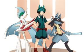 Picture crossover, pokemon, My Hero Academia, Boku No Hero Academy, Midori Isuku, My Hero Academy