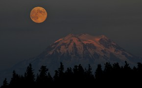 Picture the sky, trees, mountains, night, nature, rocks, the moon, the full moon