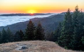 Picture United States, California, The Baulines, Mount Tamalpais