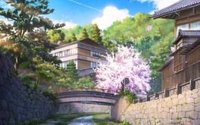 Picture bridge, nature, home, spring, Sakura, by NIK