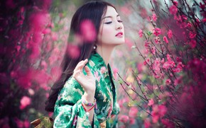 Picture look, girl, flowers, branches, nature, pose, portrait, spring, Sakura, pink, kimono, Asian, green, flowering, the …