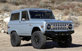 Picture Ford, 2012, Bronco, steel gray, ICON BR
