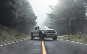 Picture Ford, Raptor, pickup, F-150, 2019, by Aaron Brimhall