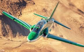 Picture Lantern, Pilot, Aerobatic team, Cockpit, Hawker Siddeley Hawk, HESJA Air-Art Photography, Saudi Hawks, Saudi Hawks, …