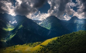 Picture forest, the sky, clouds, mountains