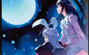 Picture night, bamboo, bow, the full moon, ears, long hair, art, bokeh, ueda ryou, moon Bunny, …