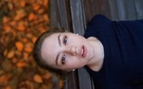 Picture autumn, girl, sponge, teeth, Alex Four