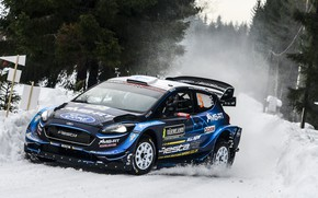 Picture ford, rally, wrc, fiesta, sweden