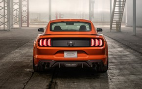 Picture Mustang, Ford, rear view, EcoBoost, 2020, High Performance Package