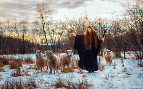 Picture girl, sheep, Samantha