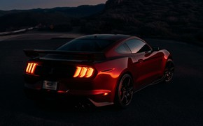 Picture night, Mustang, Ford, Shelby, GT500, bloody, 2019