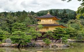 Picture lake, Park, castle, Japan, gold, Kyoto